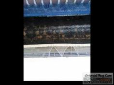 Want to Know about Fringe Cleaning Process of Clean Rug in Coconut Creek  rug fringe cleaning in Coconut Creek Area Rug Fringe Cleaning in Coconut Creek Clean Fringe in Coconut Creek Clean Rug Fringe in Coconut Creek rug fringe cleaning process in Coconut Creek rug fringe cleaning cost in Coconut Creek rug fringe cleaning equipment in Coconut Creek rug fringe cleaning procedure in Coconut Creek rug fringe cleaning price in Coconut Creek  Broward County: 954 - 978 - 5737