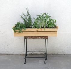 Set up an herb garden in a cedar planter.