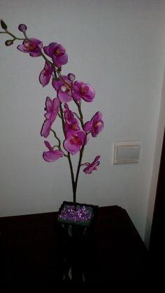 Orquídea linda...