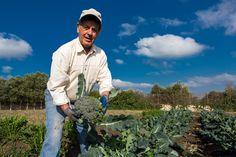 Passione per l'orto bio e amore per la natura, un connubio perfetto...