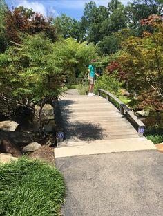 Creation Museum, Sidewalk, Side Walkway, Walkway, Walkways, Pavement