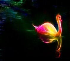 The light of love is the only anchor you have in a sea of insecurities. #love #light #soul