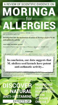 7 Ways Moringa Naturally Fights Off Asthma & Allergies Moringa Oleifera Benefits, Benefits Of Moringa Leaves, Tea Benefits, Health Benefits, Homeopathic Remedies, Natural Remedies, Cold Remedies, Health Facts, Health And Nutrition