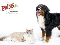 Prins Petfoods voor hond en kat