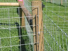 Fox Mountain Farm: Fencing Detail and Design. Using eye bolts and rebar to temporarily secure livestock panel. Goat Fence, Pasture Fencing, Farm Fence, Backyard Farming, Chickens Backyard, Cattle Panels, Cattle Panel Fence, Farm Lifestyle, The Barnyard