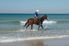 Trot in the sea