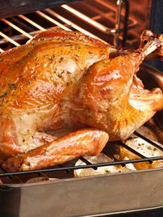 17,384 Different Turkey Recipes from Women's Day, Food.com, Allrecipes, Martha Stewart etc.  Links right to each website!