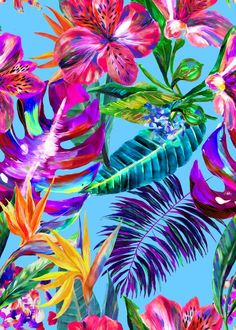 The hero print for Cruise 2017 is a playful design named after Maracas Bay in Trinidad. It was painted by hand in our London studio, using a combination of oil and acrylic paints for a loose, bold feel. Bountiful Peruvian lilies and vivid bird of paradise plants stand out against deep green foliage. The oil paints have rendered the petals almost 3D-like in quality. The Matthew Williamson blue Maracas Montage print.