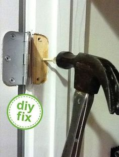 genius. use a wooden golf tee to fix stripped wood holes. hammer in. trim excess. then replace the screw!
