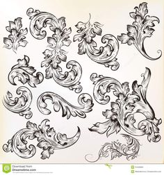 Calligraphic vintage vector design elements and page decoration
