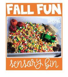 Fun fall sensory bin