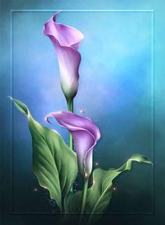 "Barnali Bagchi ~ ""Lovely Lilies"" ~ moonbeam1212."