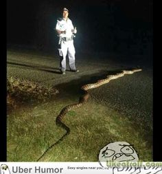 In Australia, snakes need a police escort.