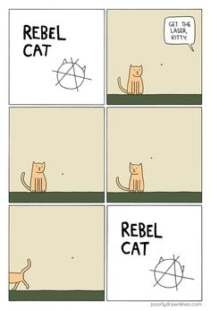 (via Poorly Drawn Lines – Rebel Cat)