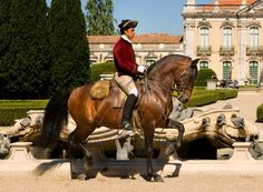 Parques de Sintra, Portuguese School of Equestrian Art at Palacio de Queluz, in Queluz, Lisbon Region, Portugal
