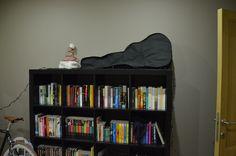 boekenkast en gitaar