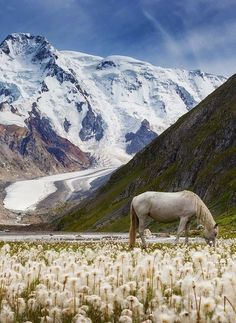 Valley of Unicorns, Kyrgyzstan - Beautiful places. Best places in the world. Places Around The World, Oh The Places You'll Go, Places To Travel, Places To Visit, Around The Worlds, Travel Destinations, Valley Of Unicorns, Peking, Nature Landscape