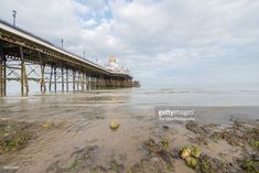 The beach and Eastbourne Pier at low tide