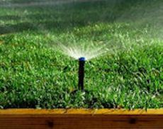 Professional Irrigation Installation and Sprinkler Repair in Frisco, Texas by Texas Waterboys, Inc.