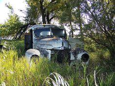 Old International Harvester grain truck in North dakota.