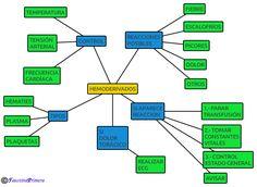 Actuaciones a seguir con la administración de hemoderivados