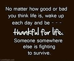 Be thankful for life quote life lifequote grateful thankful