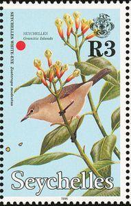 Seychelles White-eye (Zosterops modestus)