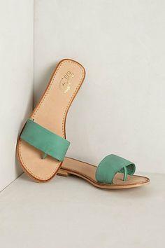 Tofino Slides
