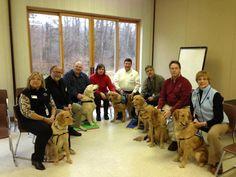 Golden Retrievers Provide Comfort for Citizens of Newtown