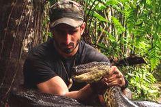Homem será devorado por cobra gigante em programa - http://metropolitanafm.uol.com.br/novidades/entretenimento/homem-sera-devorado-por-cobra-gigante-em-programa