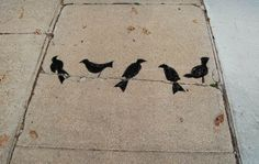 Posts about Art bird written by mkdickerson Pavement Art, Sidewalk Chalk, Bird Pictures, Street Art Graffiti, Community Art, Bird Art, Bird Feathers, Urban Art, Art Blog
