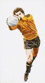 England goalkeeper Peter Shilton in 1978.