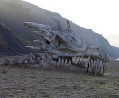 Game Of Thrones Dragon Skull Concept - Yup I have the spot in my apartment for this =)