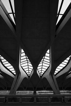 Architecture / Black and White Photography / n-architektur: Gare de Saint-Exupéry TGV Santiago Calatrava Photographyed by Arnd Dewald Airport Architecture, Art Et Architecture, Amazing Architecture, Contemporary Architecture, Installation Architecture, Architecture Details, Santiago Calatrava, Theme Design, Brutalist
