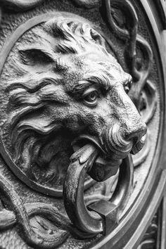 """""""Lion knocker"""" by Fernando Cabeza, via Architectural Photography, Door Knobs, Lion Sculpture, Photos, Pictures, Statue, Architecture, Art, Arquitetura"""