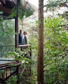 Eco Resorts in Moganshan, China - Condé Nast Traveler