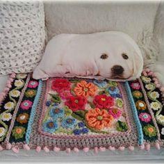 #goodmorning #sunnyday #happyday #crochetlover #happycollors