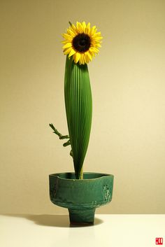 Featuring: Sunflower