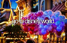go to Disney World.