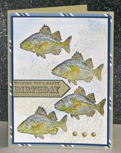 Birthday Fishes by Broom - Cards and Paper Crafts at Splitcoaststampers