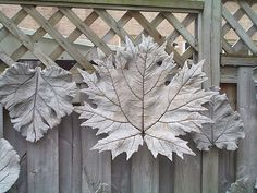Concrete Leaf from japanese rhubarb. By woolly  fabulous, via Flickr