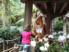 Paasweekend vol leuke activiteiten in Vlindertuin Orchideeën Hoeve.