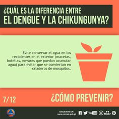 Para prevenir este tipo de epidemias tape los tanques o depósitos de uso doméstico para que no entren los mosquitos.
