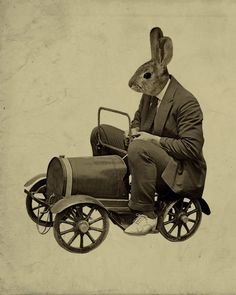 Rabbit Driving a Tiny Car by Lucius Art