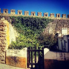 Gateway to greenery / #óbidos #Portugal / #vines #green #gate #architecture #history #culture #wall #walledcity #fort #castle #bluesky