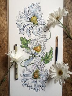 Pinterest  Arehhli