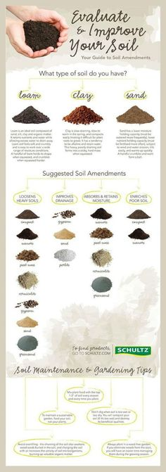 How To Identify Your Garden Soil Type