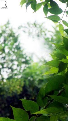 I Love Nature by Renjith Vijay on 500px