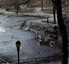 Central Park (pictured) also underwent major rejuvenation during the 1980s thanks in part to a restructuring of management that divided the park into zones, to each of which a supervisor was designated, responsible for maintaining restored areas. Discolored grass on the great lawn was reseeded and areas such as Sheep Meadowof Bethesda Terrace and Fountain, Belvedere Castle, the East Green, and Cherry Hill plaza were given new leases of life