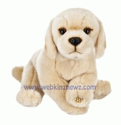 #Webkinz Signature Yellow Labrador